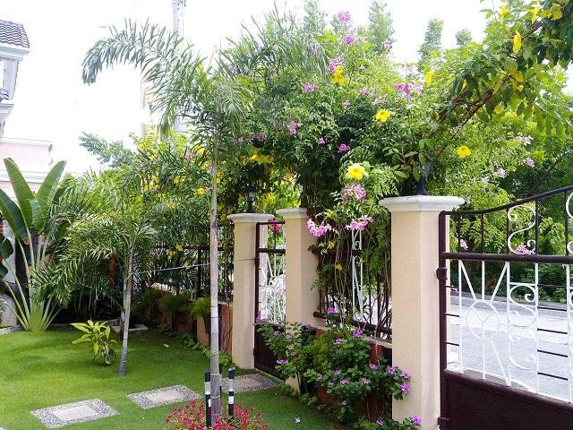 view-of-garden-towards-road
